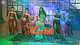 Actress Gehana Vasisth's Latest Song Ya Habibi Became A Blockbuster
